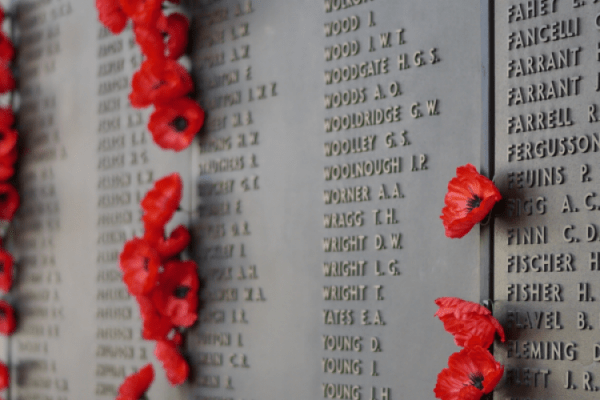Poppies on the Roll of Honour